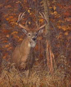 "Ryan Kirby Art — Original White-tailed Deer Painting ""Posting Up"" by Ryan Kirby Wildlife Paintings, Wildlife Art, Animal Paintings, Deer Paintings, Whitetail Deer Pictures, Deer Photos, Deer Pics, Hunting Art, Deer Hunting"