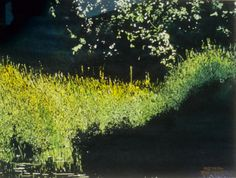 moonlit streambank / jessie's stream x micheal zarowsky watercolour on arches paper private collection Marsh Marigold, Arches Paper, Ponds, Moonlight, Watercolour, Abstract Art, Earth, Paintings, Ink