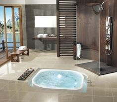 In floor bathtub...now that I've seen it I must have it.