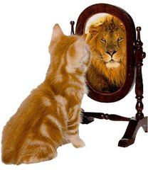 """Whatever we expect with confidence becomes our own self-fulfilling prophecy."" Brian Tracy pinned with Pinvolve"