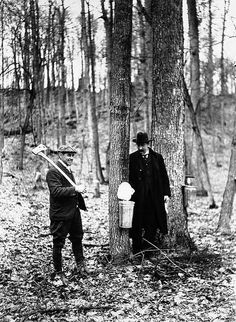 Photo from the Toronto Archives - sugarbushing in the Don lands