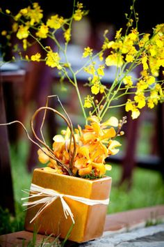 Ohhh sunny yellow orchids may work too