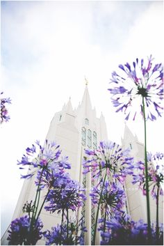 lds temples are one of my favorite things to capture san diego, being my favorite here are a few of my favorites from our july visit one of these days, there will Mormon Temples, Lds Temples, San Diego Temple, Lds Temple Pictures, Later Day Saints, Lds Art, Lds Mormon, Temple Wedding, Lds Church