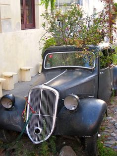 If antique cars don't interest you, perhaps a planter box? Colonia del Sacramento, Uruguay