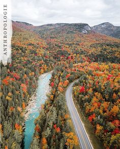Kancamagus Highway, New Hampshire Autumn Cozy, Autumn Trees, Life Is Beautiful, Beautiful Places, Rivers And Roads, God Is Amazing, Fall Is Here, Best Seasons, Travel Pictures