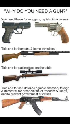 Guns are okay. Government overreach is not.