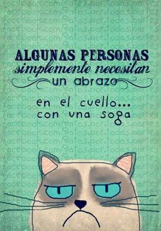 Algunas personas Fat Cats, Cats And Kittens, Cat Memes, Funny Memes, Angry Cat, Motivational Phrases, Grumpy Cat, I Love Cats, Funny Photos