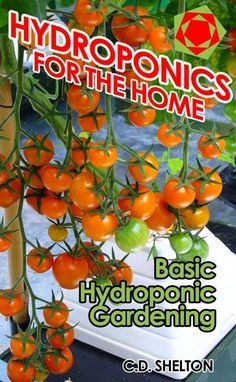 Outstanding Grow Like A Pro With These Organic Gardening Tips Ideas. All Time Best Grow Like A Pro With These Organic Gardening Tips Ideas. Home Hydroponics, Hydroponic Farming, Hydroponic Growing, Hydroponics System, Aquaponics Garden, Organic Hydroponics, Hydroponic Solution, Hydroponic Tomatoes, Hydroponic Vegetables