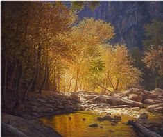 John D. Cogan - 'Light Has Come Into the Canyon'