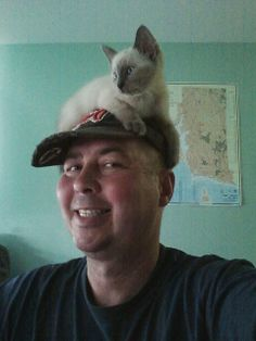cat on my head by clannon99, via Flickr