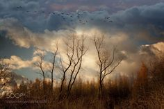 From here to the sky by Andre_Villeneuve