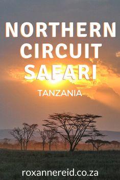 Serengeti National Park, Kruger National Park, National Parks, Zanzibar Beaches, Safari Holidays, Tanzania Safari, Air Balloon Rides, Cape Town South Africa, African Safari