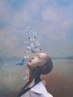 Sarah Jarrett   The Butterfly Hunter
