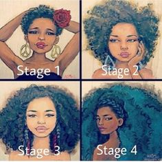 Stages of natural hair growth