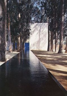 Luis Barragan architecture and lap pool