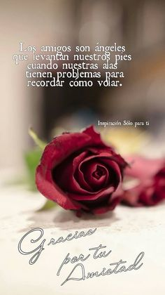 Amor Quotes, Love Quotes, Precious Moments Quotes, Spanish Inspirational Quotes, Love Rose, God Loves Me, Best Vibrators, Romantic Quotes, Friendship Quotes