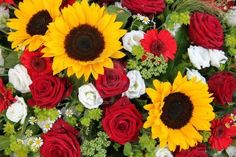 Bright yellow sunflowers and big red roses in a floral arrangement Stock Photo.  consider red paisley, bandana, decor and red checked tablecloths