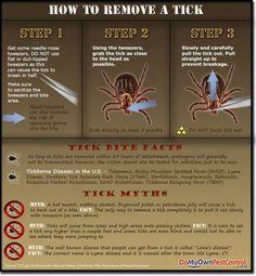 Tick Repellent Recipe & How To Remove A Tick » The Homestead Survival#.UYquV1fm9A4#.UYquV1fm9A4