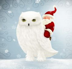 OWL~ SANTA WITH A WHITE OWL.