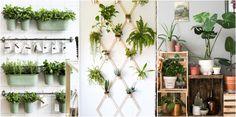 Si no tienes terraza en casa, ¡no te preocupes! Te contamos cómo montar un pequeño jardín o un mini huerto.