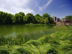 Central Park's handsome Belvedere Castle is home to the Henry Luce Nature Observatory.