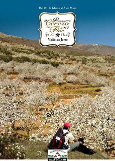 MEDIATOOLStv: El Valle del Jerte prepara con tiempo su Primavera y Cerezo en Flor