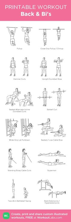 Workout labs - Back & Bi's my custom printable workout by workoutlabs customworkout Back And Bicep Workout, Biceps Workout, Gym Workouts, At Home Workouts, Workout Routines, Workout Tips, Fit Girl Motivation, Fitness Motivation, Fitness Diet