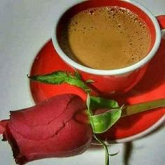 Good Morning Coffee, Coffee Love, Amazing Nature, Tea Cups, Vegetables, Tableware, Food, Morning Quotes, Chocolate