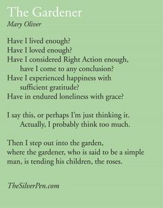 Mary Oliver Poem, The Silver Pen