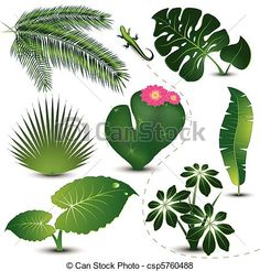 feuille exotique plante monstera csp6781152 dessin pinterest uvres d 39 art clip. Black Bedroom Furniture Sets. Home Design Ideas