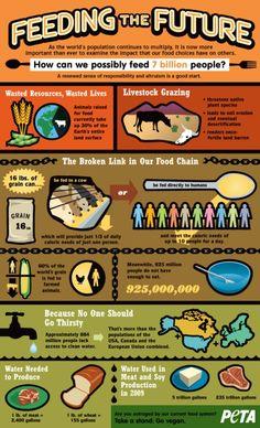 feeding the future (from antigoneXXI blog post «POURQUOI CHOISIR UN MODE D'ALIMENTATION 100% VEGETAL ? 5 – POUR LES HOMMES»)