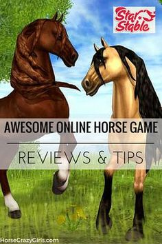 I was excited to learn about Star Stable and I immediately went to their website to play it. I had a little trouble downloading it to my PC, but once I