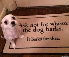 Best welcome mat #Funny #Memespic.twitter.com/ngx08Cy0qo http://ibeebz.com