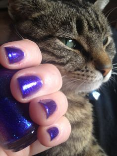 5ml bottle of 'Unicorn Shampoo'. $3.50, via Retrograde Fermata on Etsy.  -- I love this color AND this kitty. All RF polishes are hand mixed, and you can even collaborate and create your own color.
