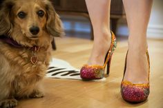 Bedazzled pumps and little pups #BeautyCollection #HotInTheCity