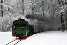 Winterliche Malreise auf Rügen | Rasender Roland im Schnee (c) Jost Grünheid #Winter #Schnee #Mecklenburg-Vorpommern #Rügen #rasender_Roland