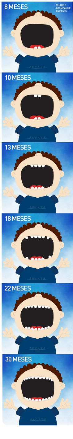El erupcion del último grupo de molares probablemente sera en los 33 meses (si no antes). A los tres años, la sonrisa de su hijo tendra 20 dientes de leche. #DeltaDental #LasCariesSePropagan