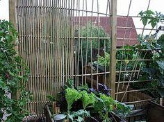 GroBartig Gestalten Mit Bambusstäben