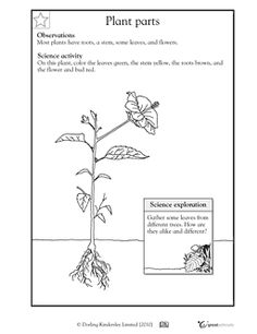 basic photosynthesis grade 2 use this printable to teach children about photosynthesis. Black Bedroom Furniture Sets. Home Design Ideas
