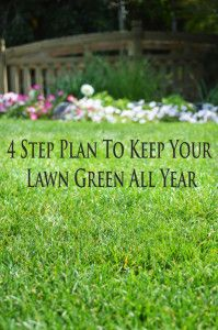 A 4 Step plan to keep your lawn green and healthy throughout the year.