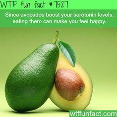 Avocados can make you happy - WTF fun fact