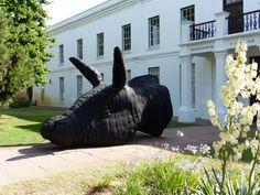 Vor dem Kunstzentrum P. Olivier Safari, South Africa, Whale, Animals, Cape Town, Travel Advice, Whales, Animales, Animaux