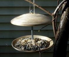 Make an easy bird feeder out of Ikea bamboo plates. Perfect for sprucing up your garden while feeding our feathered friends. Make A Bird Feeder, Bird Feeder Plans, Bird Feeders, Platform Bird Feeder, Bird Feeding Station, Easy Bird, Bird House Kits, Wild Birds, Beautiful Birds
