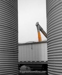 grain bins unloading corn