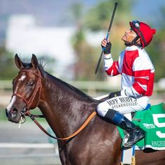 Songbird and Mike Smith win the 2015 Chandelier Stakes, Santa Anita Park, Faster Horses, Thoroughbred Horse, Racehorse, Horse Farms, Kentucky Derby, Horse Racing, Animals And Pets, Riding Helmets