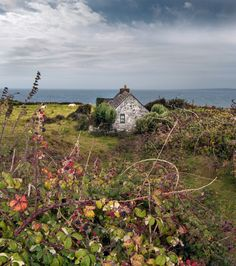 Cottage in Ireland photographed Galina Solomentseva Nature Landscape, Irish Landscape, Ireland Landscape, Beautiful World, Beautiful Places, Irish Cottage, Coastal Cottage, English Country Style, Cottages By The Sea