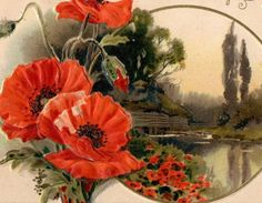 Colorful Antique John Winsch Birthday Greetings Postcard 1910s Good Used Condition Red Poppies Country Landscape