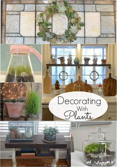 Great tips for decorating with Plants
