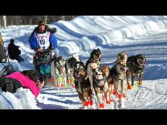 What is the Iditarod? | AK Explained - YouTube