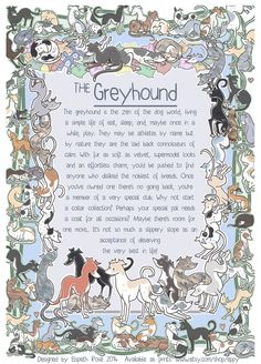The Greyhound 6x8 Info Print by Eppy on Etsy, £5.00